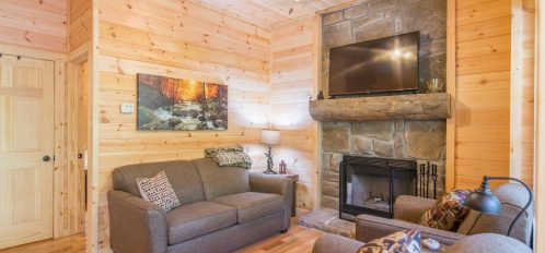 Ash Cave Cabin - Living Room 4